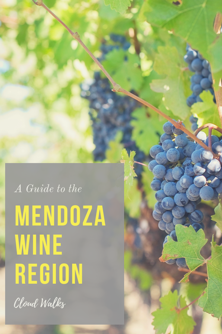 A guide to the Mendoza Wine Region