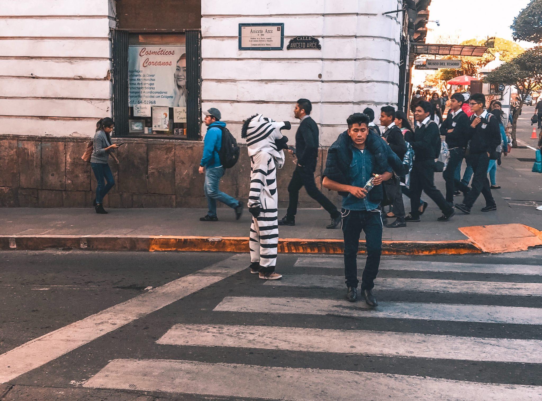 Zebra Crossing Sucre Bolivia