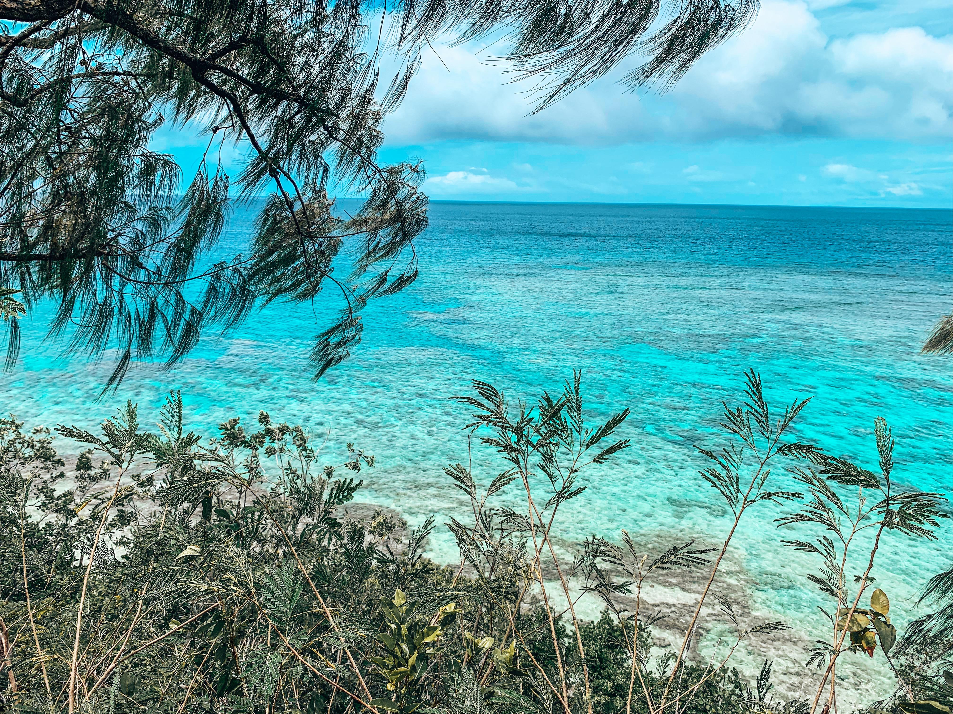 Lelepa Island Vanuatu