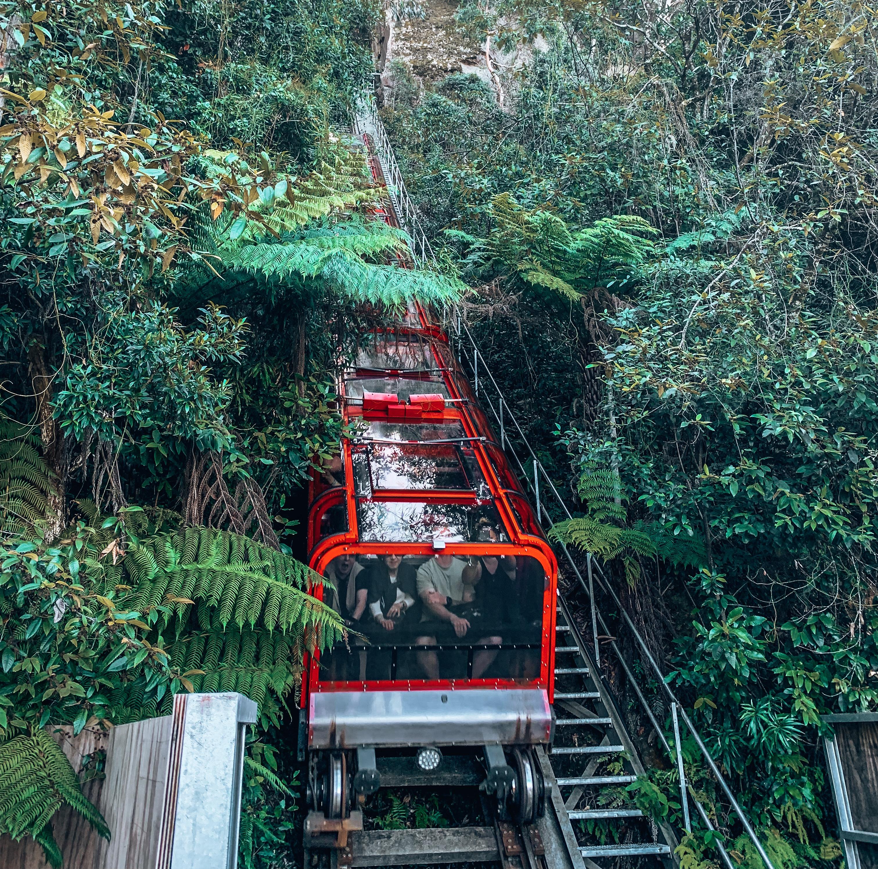 Scenic Walkway